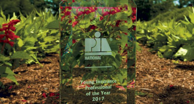 FROM PUPPIES AND KITTENS TO NATIONAL INSURANCE AWARD WINNER