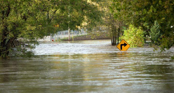WASHING AWAY THE FALLACIES OF FLOOD