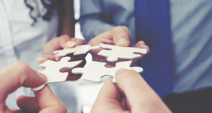 THE IMPACT OF AGENCY CONSOLIDATION