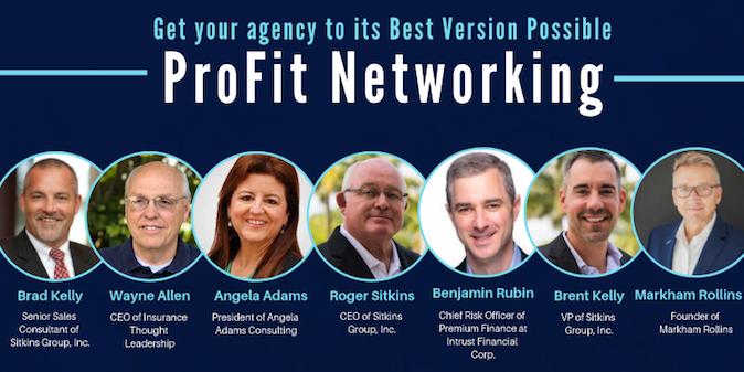 Sitkins Profit Net