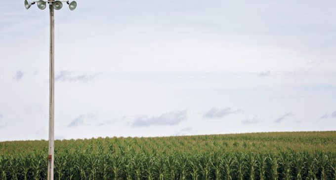 DON'T LET YOUR CLIENT'S FIELD OF DREAMS BECOME THEIR PLACE OF NIGHTMARES